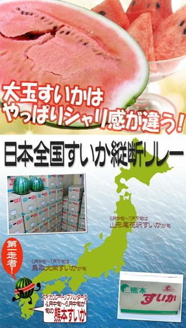 """【送料無料】熊本県産 """"熊本すいか"""" 訳あり 2L~3Lサイズ 2玉 約14kg~18kg(1玉重量約7~9kg)【予約 4月中旬以降】"""