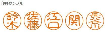【メール便発送】シヤチハタ ネーム印 ブラック11 既製 0591 小野崎 XL-11 0591 オノザキ