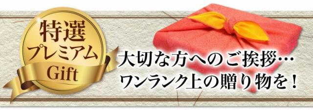特選プレミアムGift ワンランク上の贈り物を!