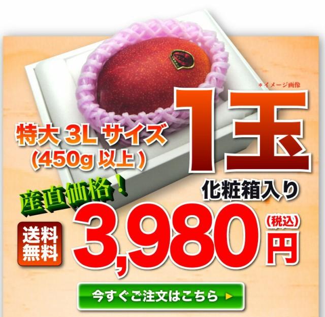 特大3L玉 1個3980円