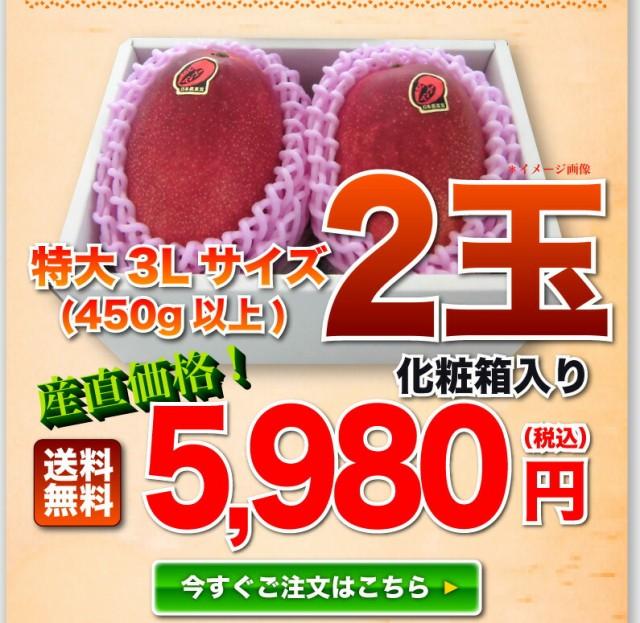 特大3L玉 2個4980円