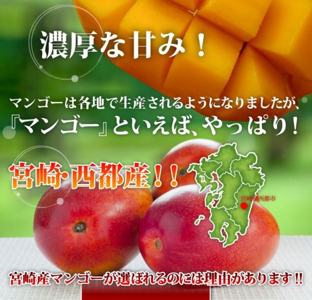 宮崎産マンゴーが選ばれるのには理由があります!!