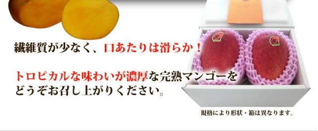 繊維質が少なく、口あたりは滑らか!トロピカルな味わいが濃厚な完熟マンゴーをどうぞお召しあがりください。