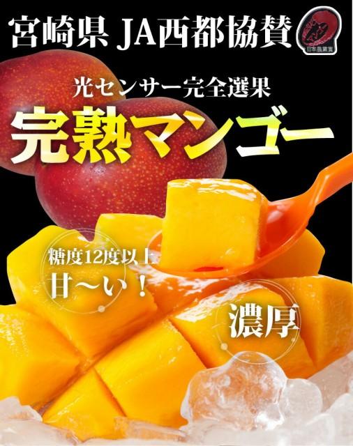 完熟マンゴー 糖度12度以上 濃厚