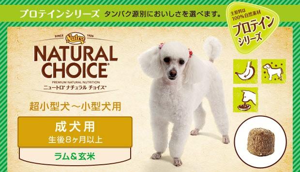 ニュートロ ナチュラルチョイス ラム&玄米 超小型犬〜小型犬用 成犬用
