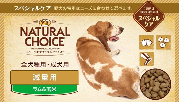 ニュートロ ナチュラルチョイス 減量用 全犬種用 成犬用 ラム&玄米