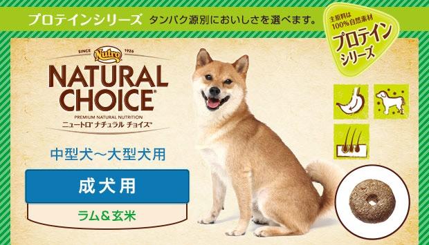 ニュートロ ナチュラルチョイス ラム&ライス 中型犬〜大型犬用 成犬用