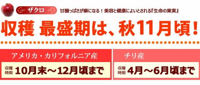 日本でのザクロの最盛期は秋頃