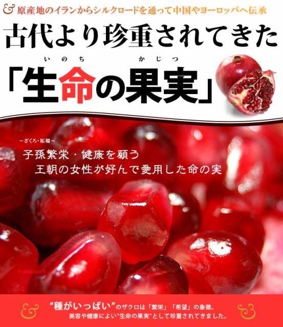 生命の果実ザクロ