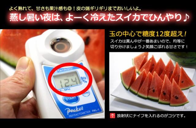 鳥取大栄スイカ糖度の目安