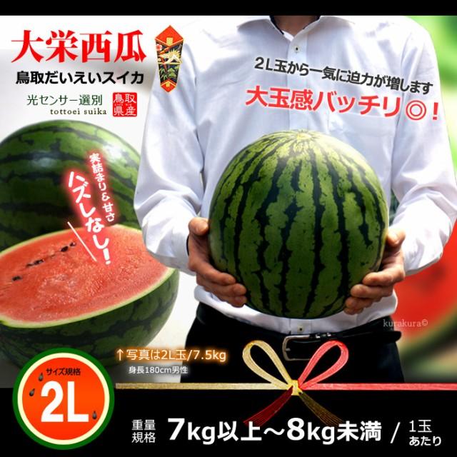 鳥取大栄スイカ大玉2L販売イメージ