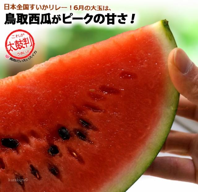 初夏6月からは鳥取大栄スイカがうまい!