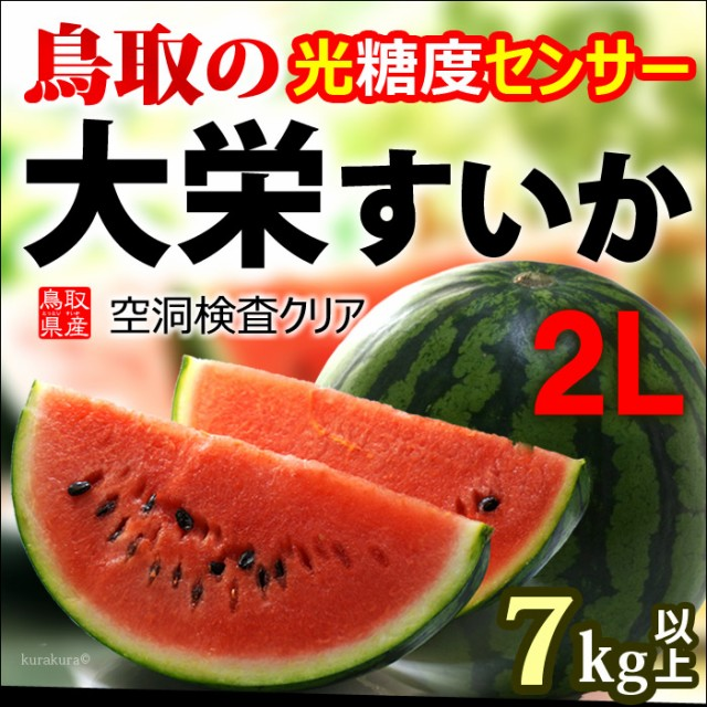 鳥取大栄スイカ2L玉販売/通販