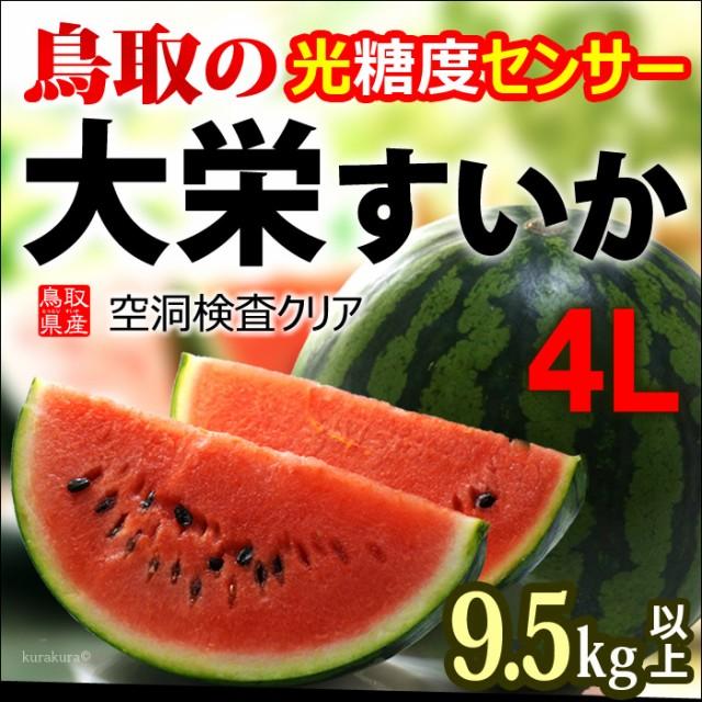 鳥取大栄スイカ4L玉販売/通販