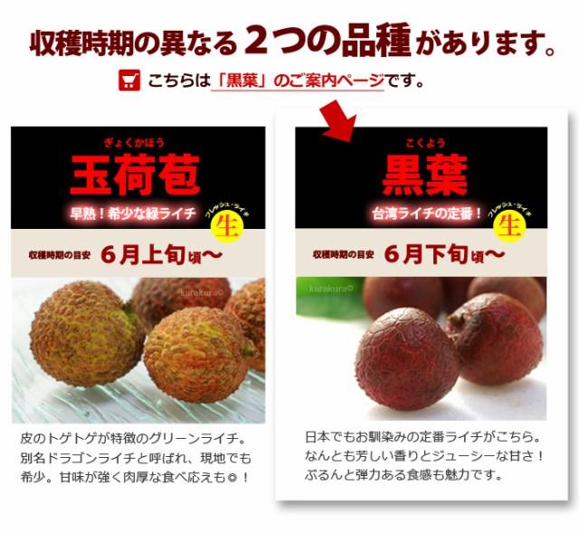 台湾の黒葉ライチと玉荷苞ライチ
