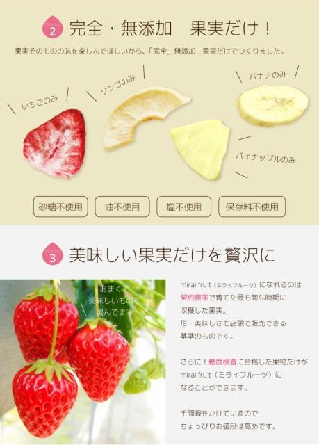 フリーズドライフルーツ mirai fruits ミライフルーツ 未来果実 バナナ 12g×48パック 無添加 砂糖不使用 ベビーフード