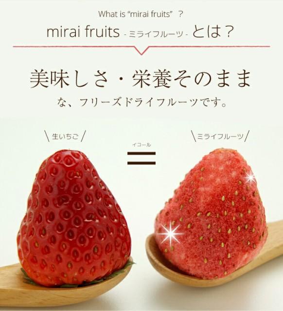 フリーズドライフルーツ mirai fruits ミライフルーツ 未来果実 いちご 10g×10袋 無添加 砂糖不使用 ベビーフード