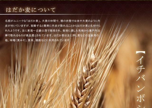 麦はイチバンボシ