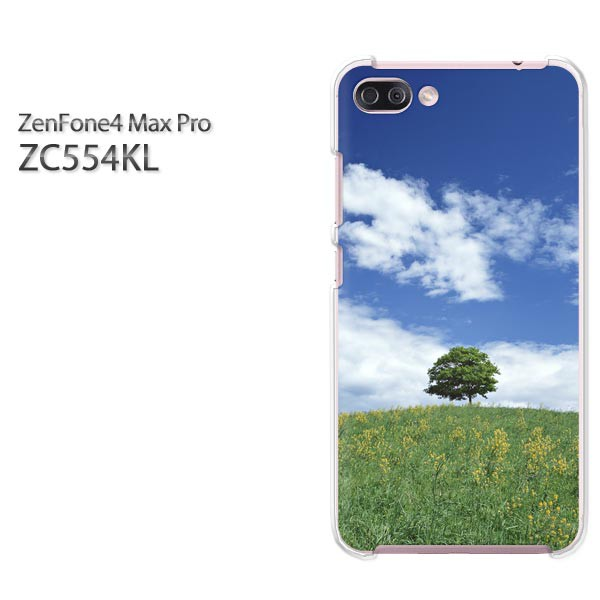ゆうパケスマホケース ハード ZenFone4 MAX Pro ZC554KL クリア 夏・シンプル・空・木(ブルー)/zc554kl-pc-new0222]