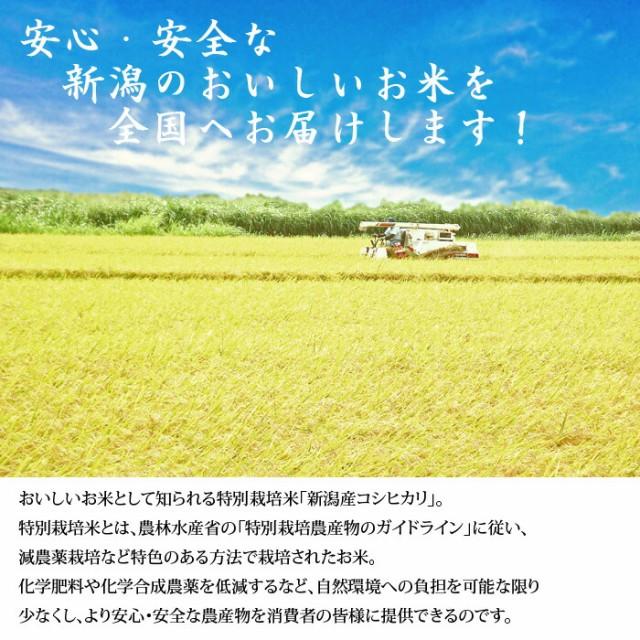 新潟産特別栽培米コシヒカリ5kg