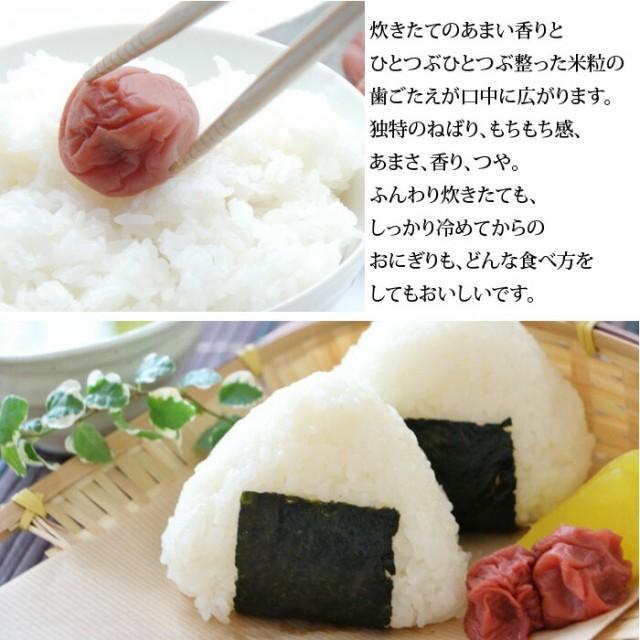 米 5kg コシヒカリ 新潟県産 特別栽培米 こしひかり 新潟産 にいがた お米 こめ おこめ 白米 ごはん