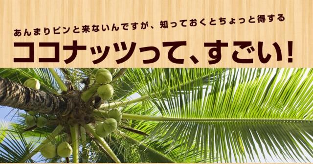 ココナッツって凄い