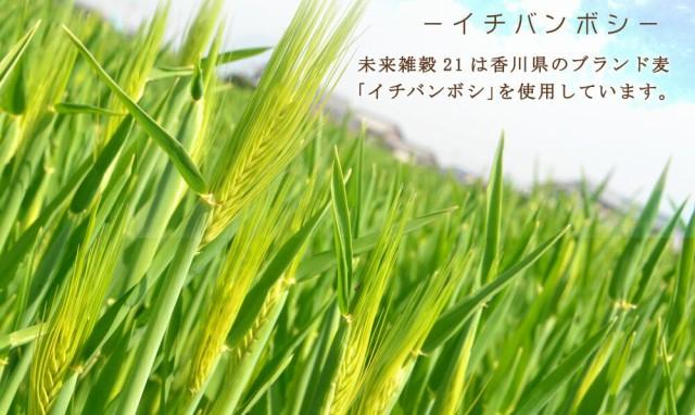 ブランド麦を使用