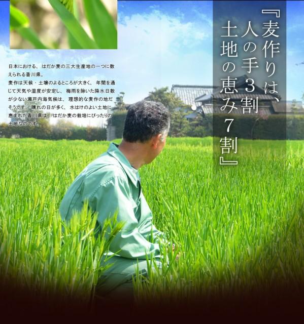 質の良い麦の産地