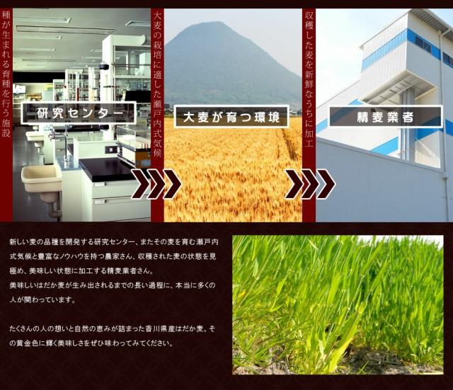 麦が生まれる工程