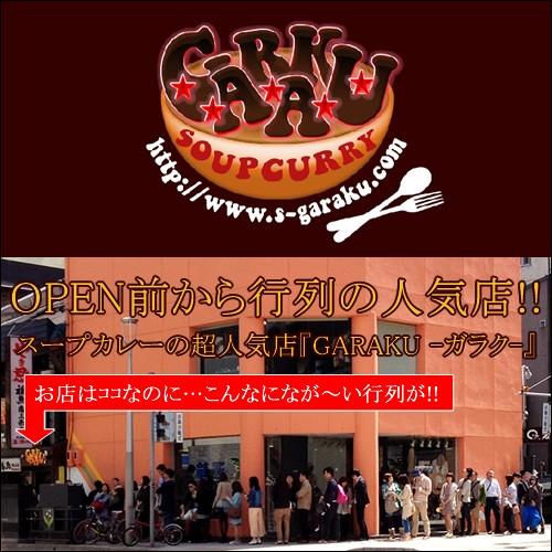 北海道 スープカレー GARAKUISM ガラクイズム チキン 札幌スープカレー(5食セット)(自宅用) / ガラク スープカレー チキン 北海道