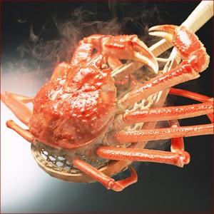 送料無料 ロシア産 ズワイガニ 1尾 660g×3尾 / ギフト 海鮮 ズワイ 蟹 かに カニ ボイル ずわい蟹 ギフト