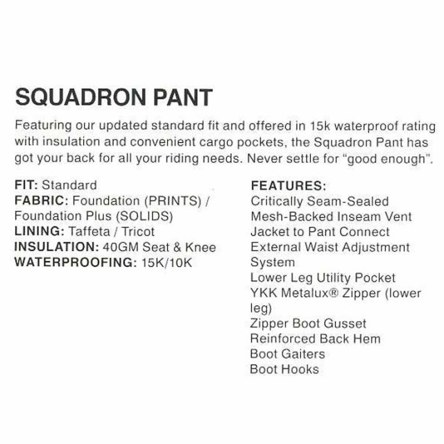 Sessions Mens Snowboard Pants Squadron 2019
