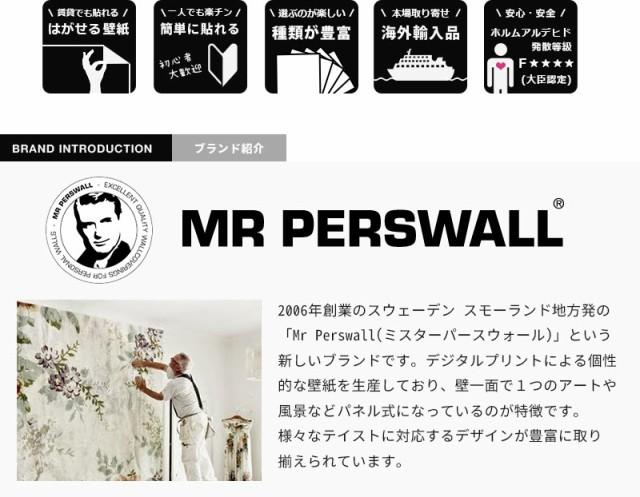 【王様のブランチ】輸入壁紙 貼ってはがせる壁紙 MR PERSWALL【4巾】ミスターパースウォール communication コミュニケーション  Transmi