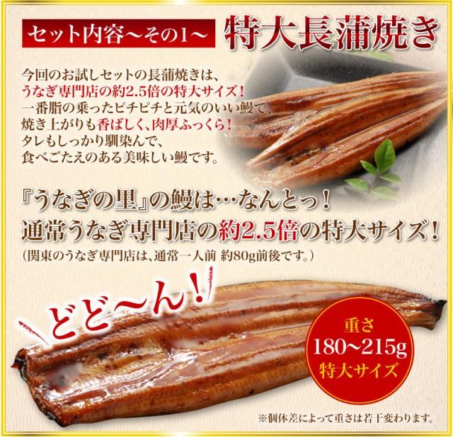 セット内容その壱 特大長蒲焼き コクと香りの秘伝の特製タレ