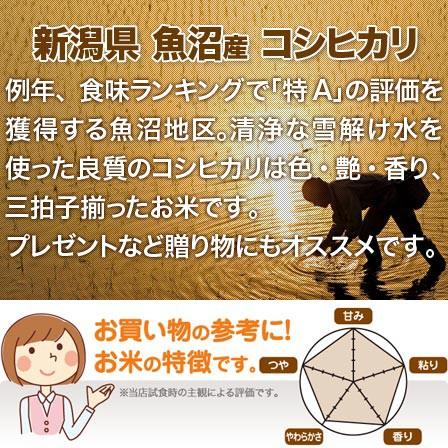 新潟県 魚沼産コシヒカリ 米 2kg 送料無料 29年産 (玄米)又は(白米/精米)