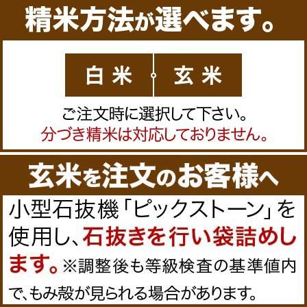 北海道 ゆめぴりか 米 5kg 送料無料 29年産 (玄米)又は(白米)