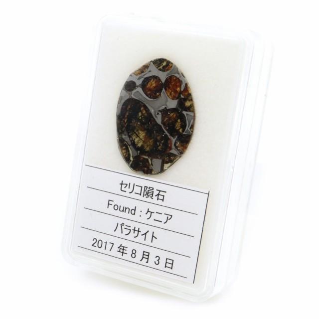 隕石 パラサイト 1063 パラサイト隕石