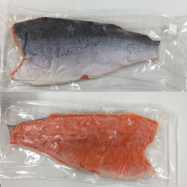 お刺身サーモン 銀鮭 900g前後 生食 寿司 業務用 ハラス とろサーモン 手巻き  お中元 退職祝い ポイント消化