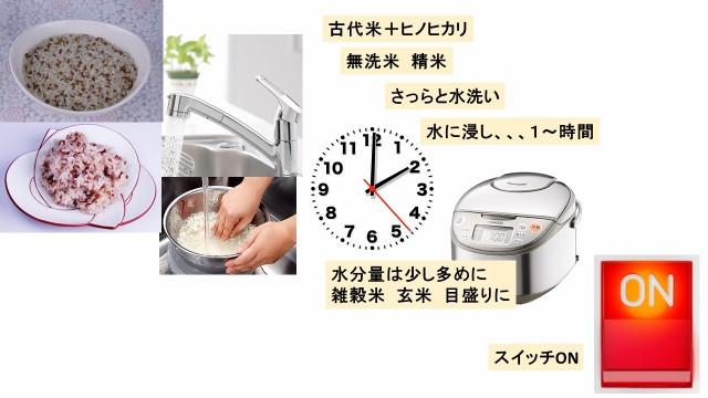 祝い米 京都・奥宇治からの贈り物 古代浪漫の赤米のルーツ古代赤米 (300g 2合)送料無料