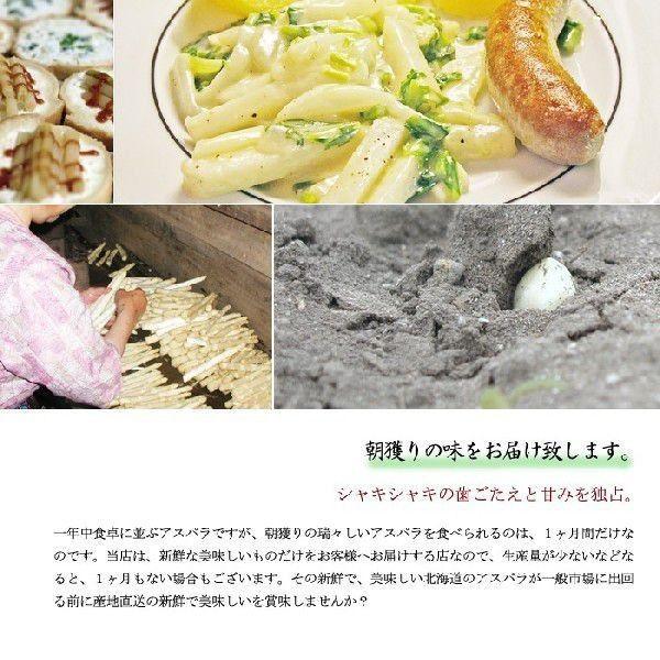 【送料無料】(アスパラ)アスパラガス 北海道産 1kg 最高級 ホワイトアスパラ