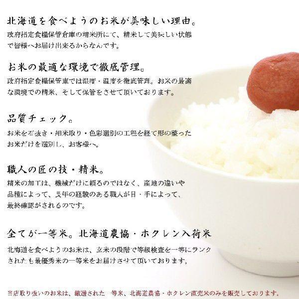 米 10キロ×3 送料無料 安い ななつぼし 北海道産 お米  10kg×3 安い 白米 北海道米 検査一等米