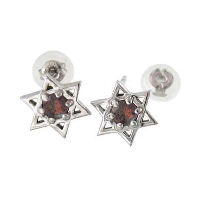 売れ筋商品 ガーネット 両耳 ピアス 六芒星 一粒 プラチナ900 1月の誕生石 キャッチ付き, お名前シールのNAD e1c92e4f