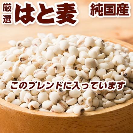 雑穀 国産麦5種ブレンド 30kg(500g×60袋)(丸麦 胚芽押麦 はだか麦 もち麦 はと麦) 業務用サイズ  送料無料