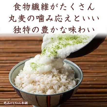 雑穀 国産麦5種ブレンド お試し100g(丸麦 胚芽押麦 はだか麦 もち麦 はと麦) お試しサイズ  送料無料