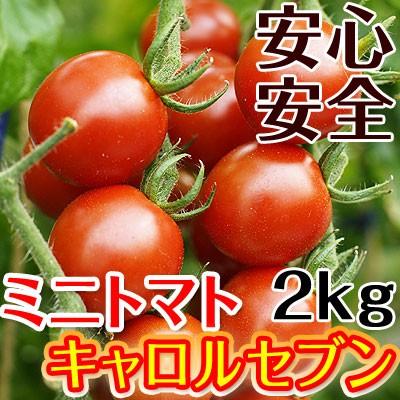ミニトマト キャロルセブン 2kg【送料無料】減農薬・減化学肥料で栽培する、驚きの糖度と絶妙のコク、濃厚な風味が余韻を引く美味しいト
