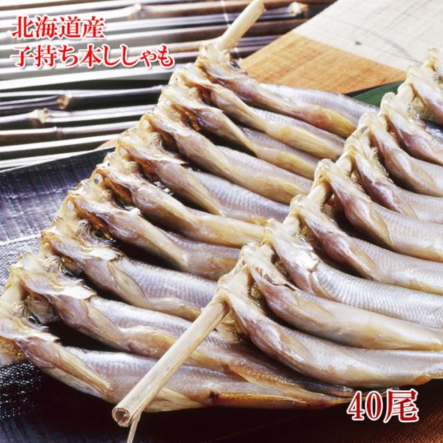 送料無料【北海道産】本ししゃも(メス)40尾】北海道でしか水揚げされない本ししゃもです。カラフトししゃも(カペリン)とは異なる格別・