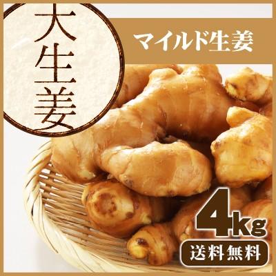 【送料無料】高知県産 大しょうが 2Kg