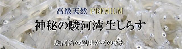 高級 天然 Premium 神秘の駿河湾 生しらす