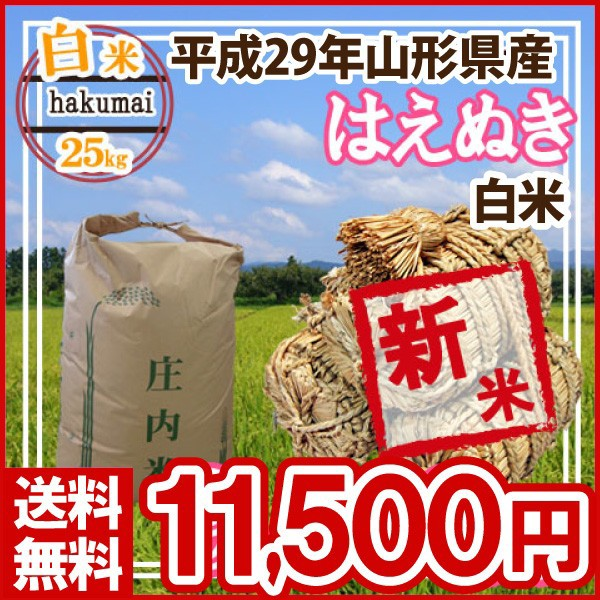 平成29年 山形県産 はえぬき 精米済 25kg(5kg×5)(送料無料)