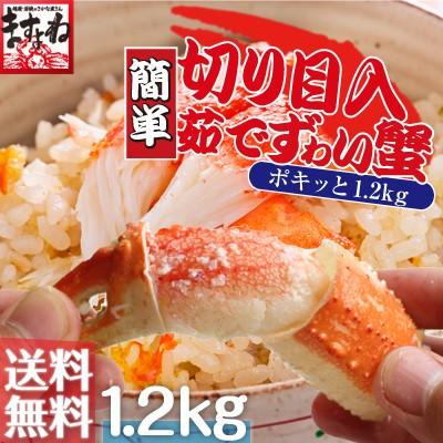 ポキポキッっと簡単に殻むき体験!切り目入り茹でずわい蟹大盛り1.2kg[ボイル/蟹足][送料無料](かに/カニ/蟹/ずわい/ズワイ/お歳暮/御歳